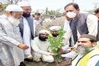 جڑانوالہ :شجرکاری مہم کے تحت 2 ہزار پودے لگانے کا آغاز