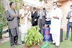 آرٹس کونسل کے اشتراک سے پرفارمنگ آرٹس اکیڈمی بنانے کا اعلان