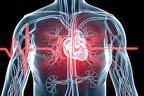 ایشیا ، دل کی بیماریاں وبا کی طرح پھیل رہی ہیں:تحقیق