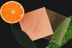 سویڈن:نارنجی کے چھلکے سے شفاف لکڑی تیار کر لی گئی