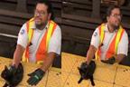 ریلوے ملازم نے بلی کو ٹرین کی زد میں آنے سے بچا لیا