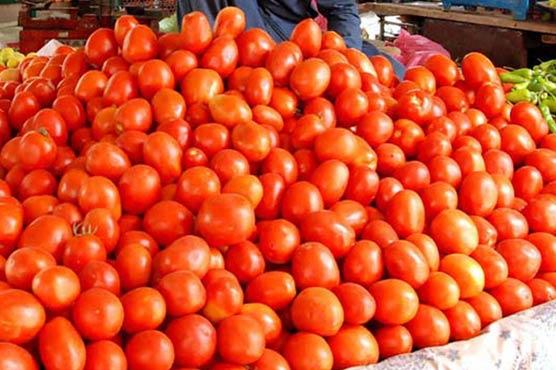 سندھ،نیاٹماٹر آگیا،منڈی  کی رونقیں بحال ،نرخ کم