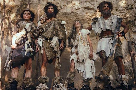 انسان سوا لاکھ سال پہلے بھی لباس بنانا جانتا تھا:تحقیق