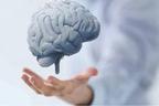 دماغی افعال بہتر بنا کر ذہنی تنزلی سے بچانے والی عادات