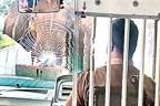 جنگلی ہاتھی کا بس پر حملہ، مسافروں کا کیا بنا، ویڈیو وائرل