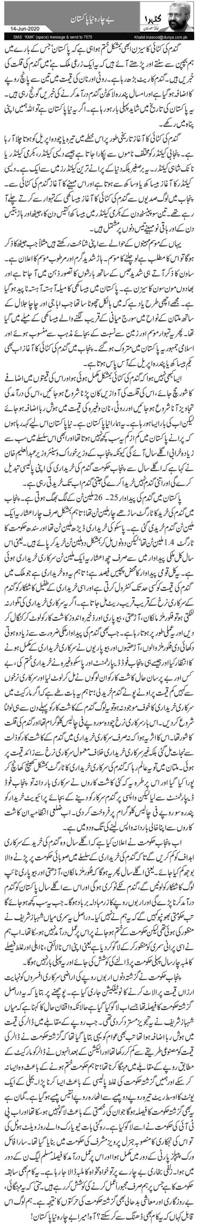 بے چارہ نیا پاکستان