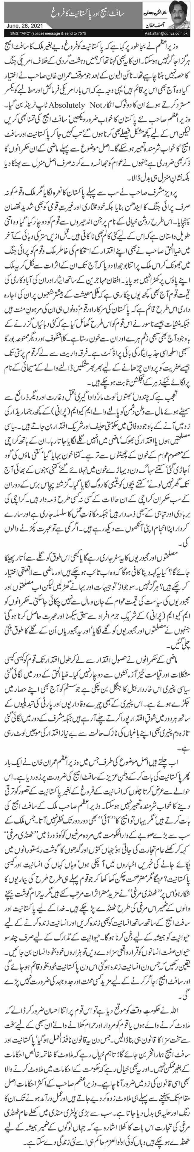 سافٹ امیج اور پاکستانیت کا فروغ