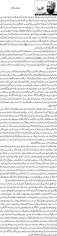 ہیگ کا لاہوری سیفی