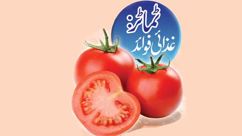 23454 27583537 - ٹماٹر: غذائی فوائد